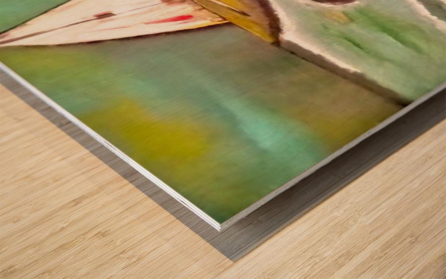 0 2 7 Wood print