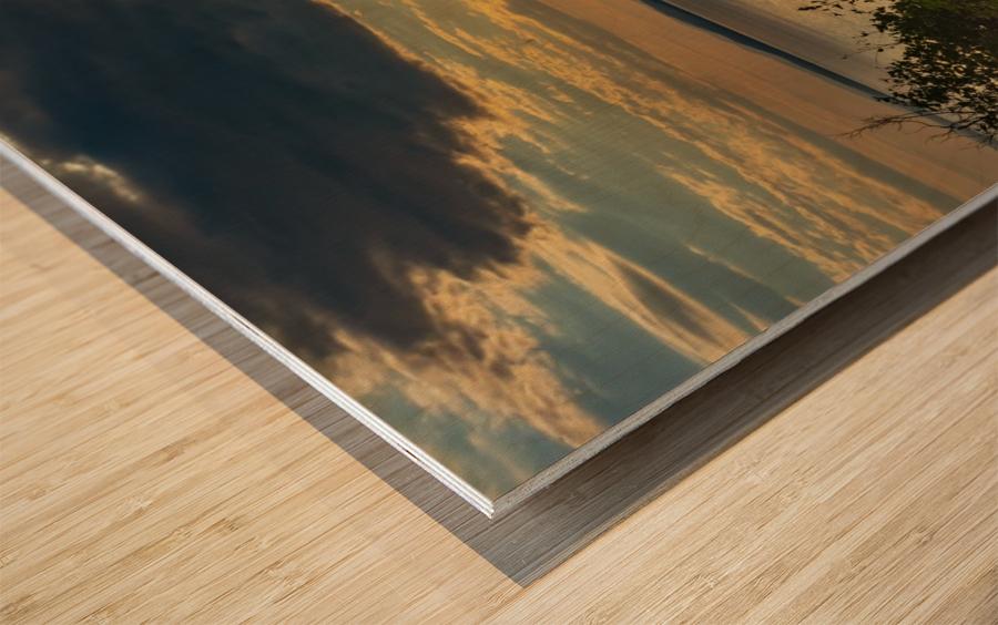 Holiday pleasure Wood print