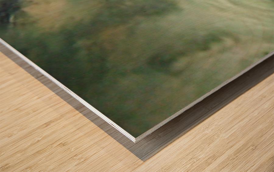 1548132183050 Wood print