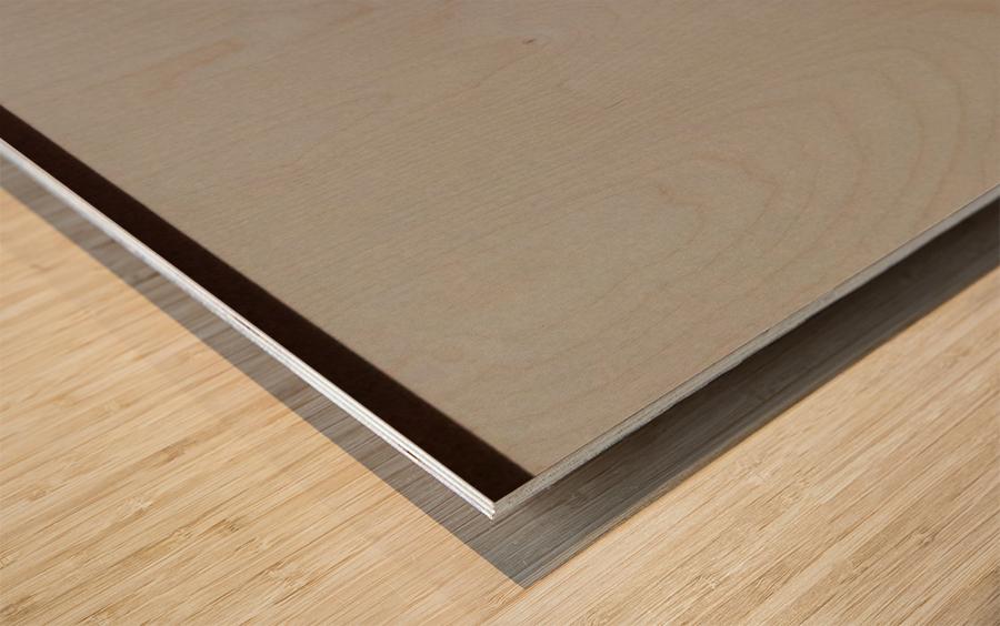 Chiffron Wood print