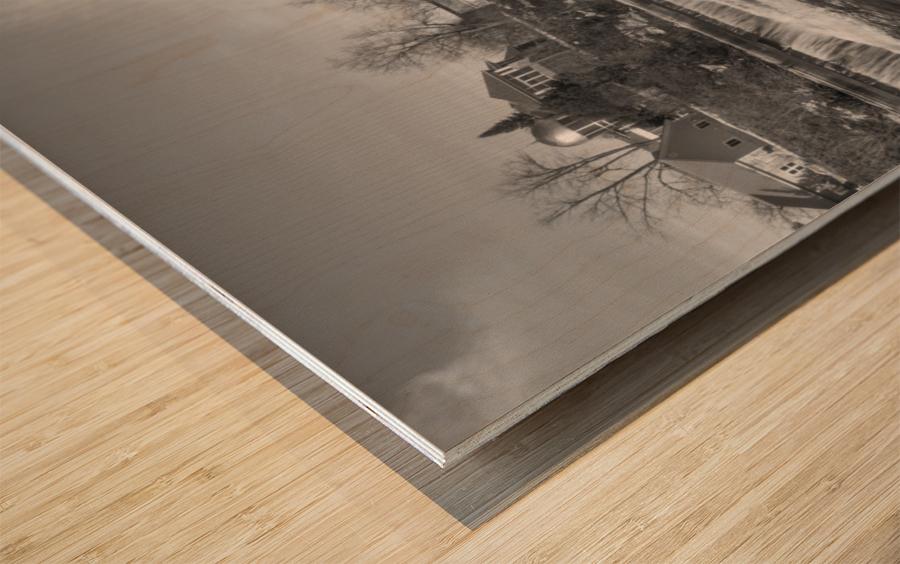 Almonte Spring 4 b&w Wood print