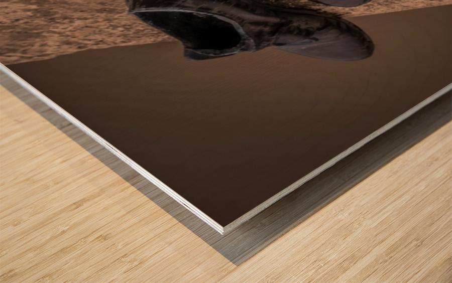 One Step  Wood print