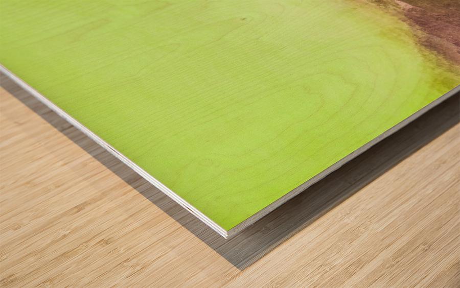 896D69E1 58A6 47B8 BA17 A1F90A7132FB Wood print