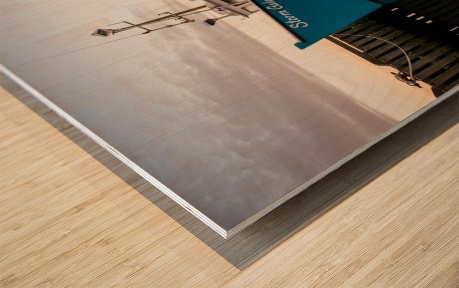 Storm Gale Wood print