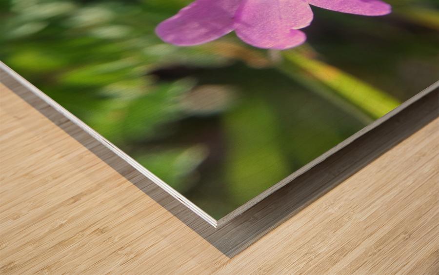 IMG_3451 Wood print