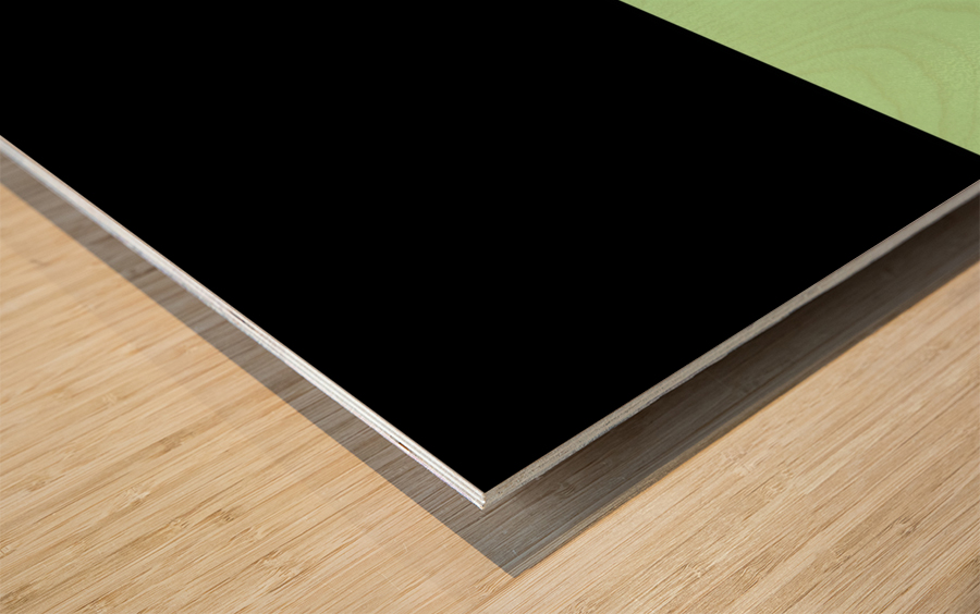 ABSTRACT GREEN GLITTER Wood print