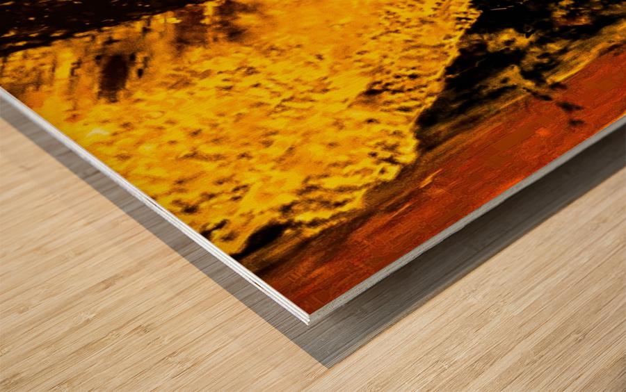 10E4D7ED 958A 4074 91A3 4A59C63D64AA Wood print