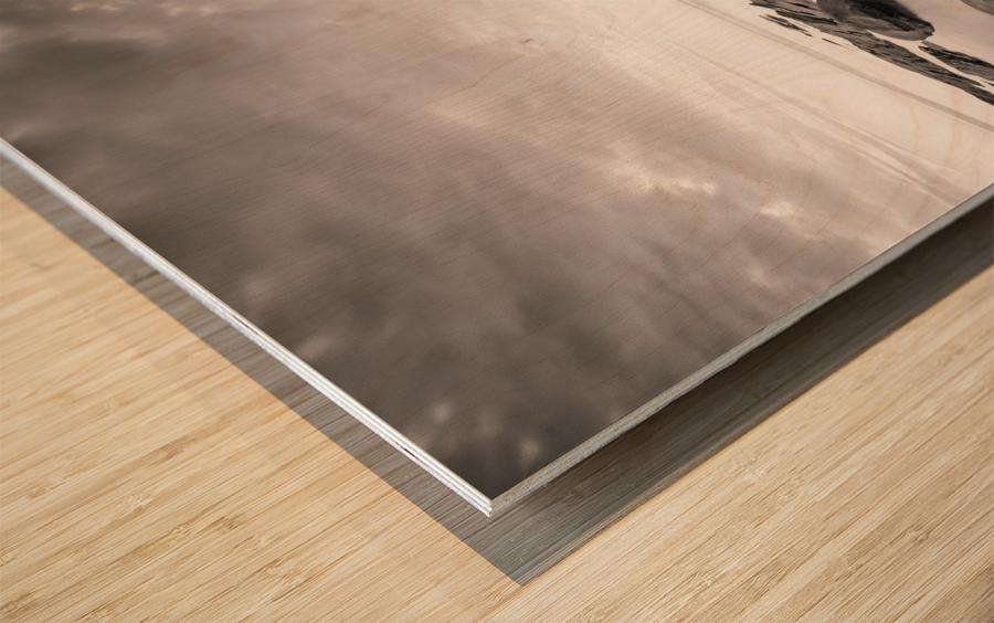 Moment of zen Wood print
