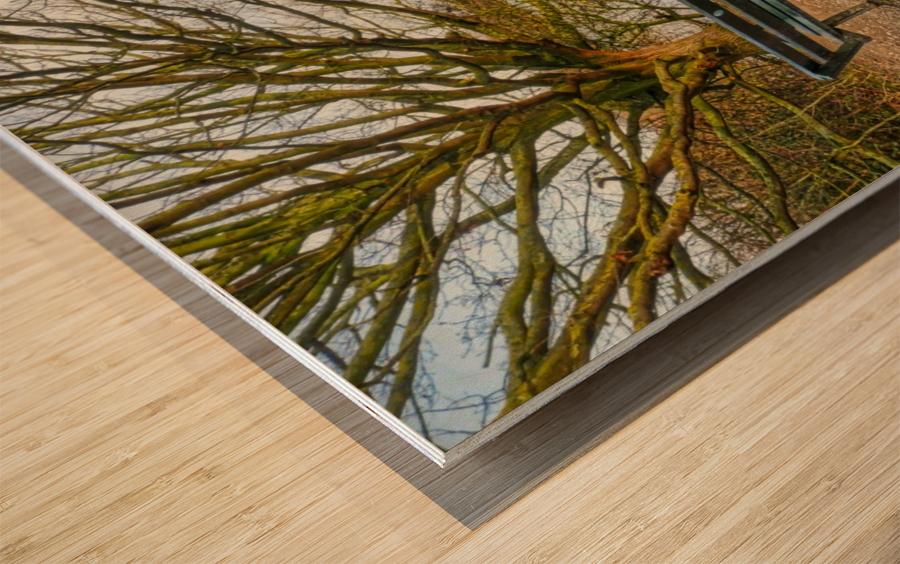 Empty view Impression sur bois