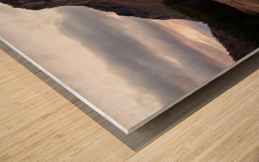 Grand Falaise Wood print
