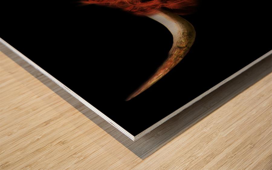 Heidi Wood print
