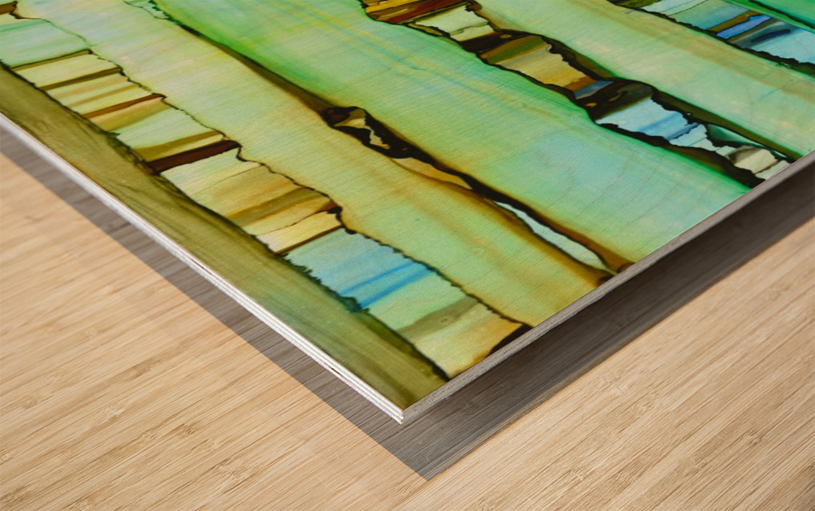 Between the Lines 2 Wood print
