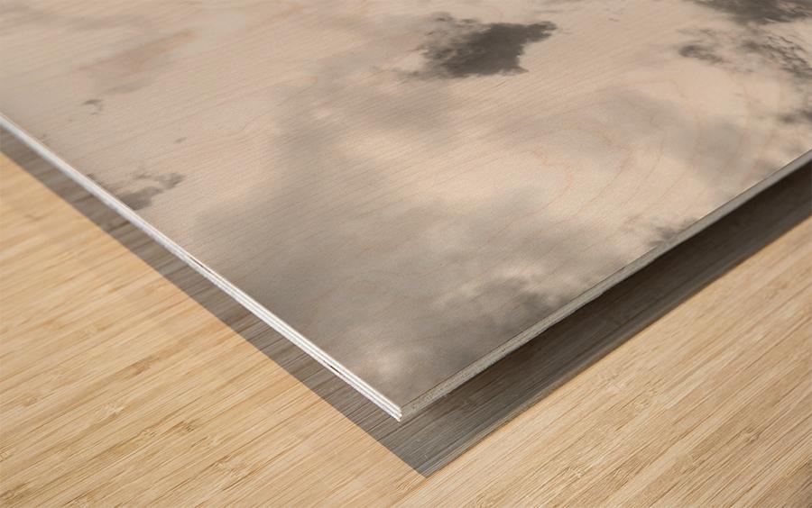 Tanked Wood print