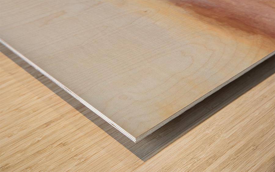 DD2FADA5 2435 4E3B 9E4D A280EA452E9F Wood print