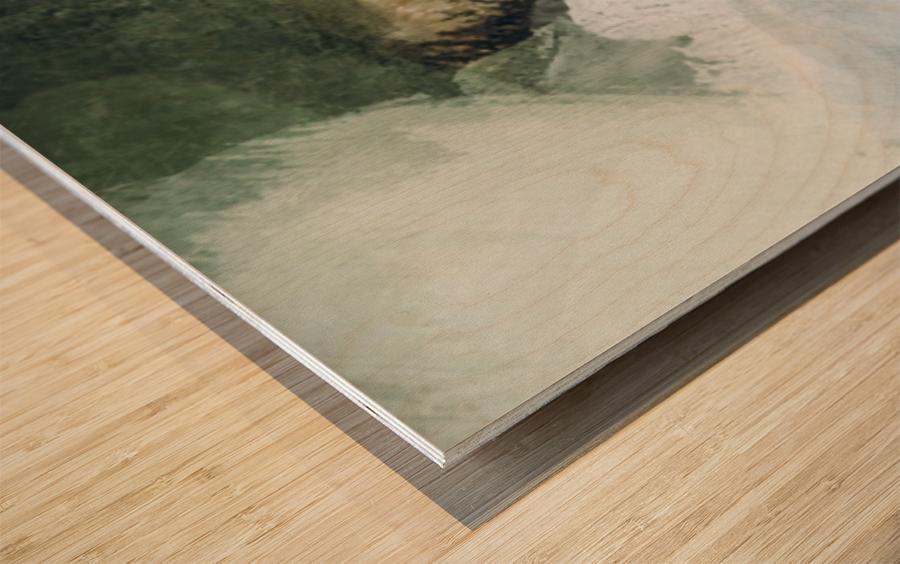 50242300 9F96 47D3 AEE9 7CA7C4D6B9C3 Wood print