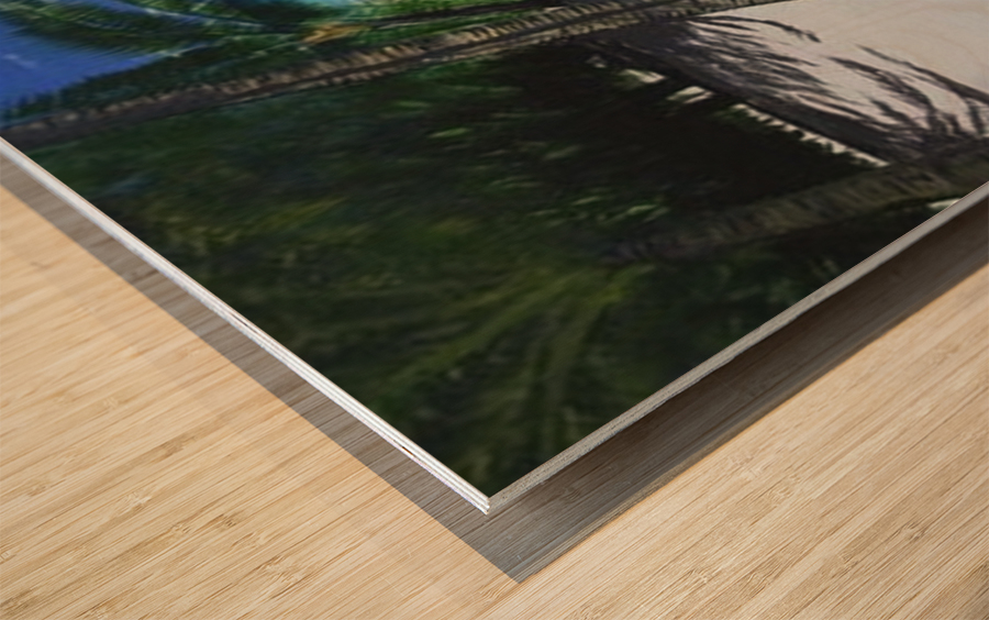 Shadow Beach by Robert Clark Wood print