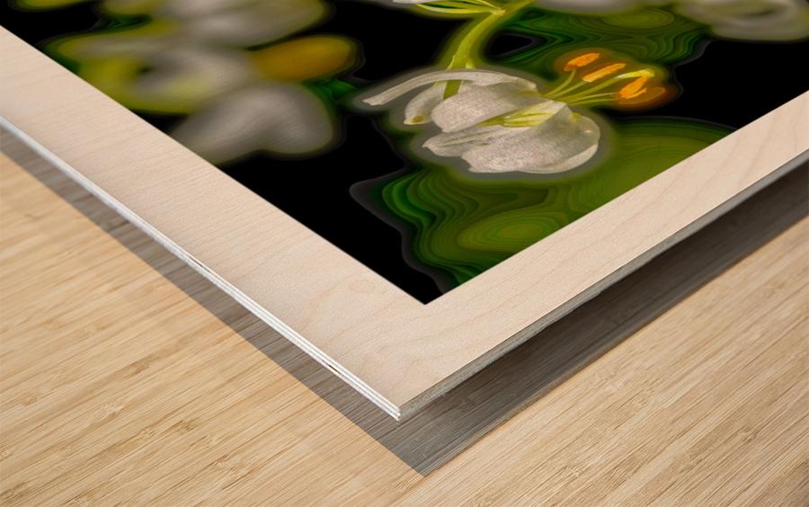 Jardin de Métis - 7 Wood print