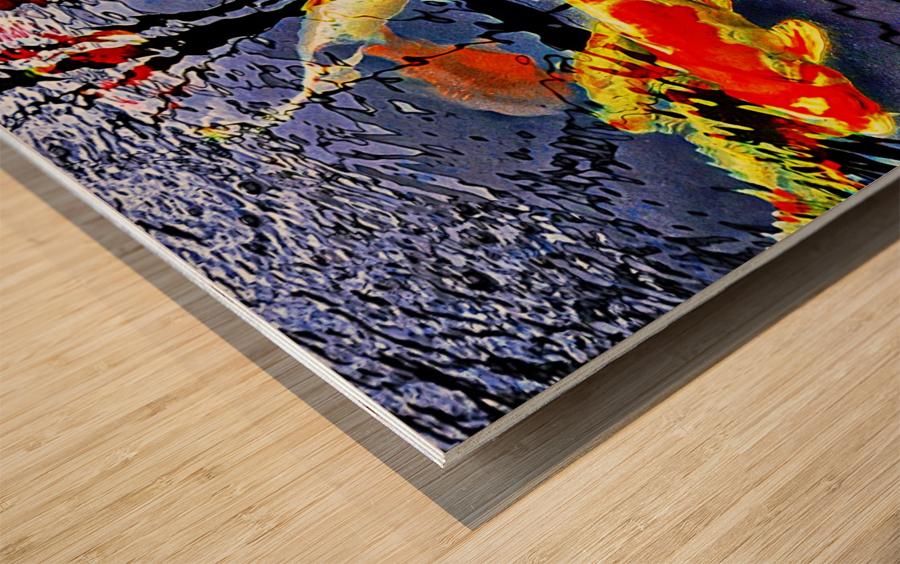 Koi Carp Huddle Wood print