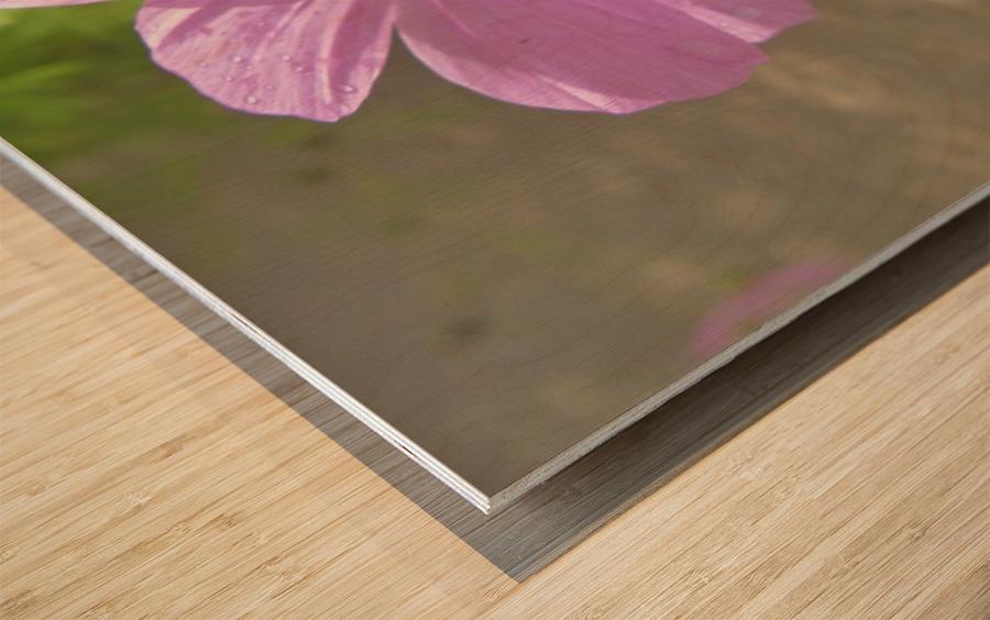Flowers (83) Wood print