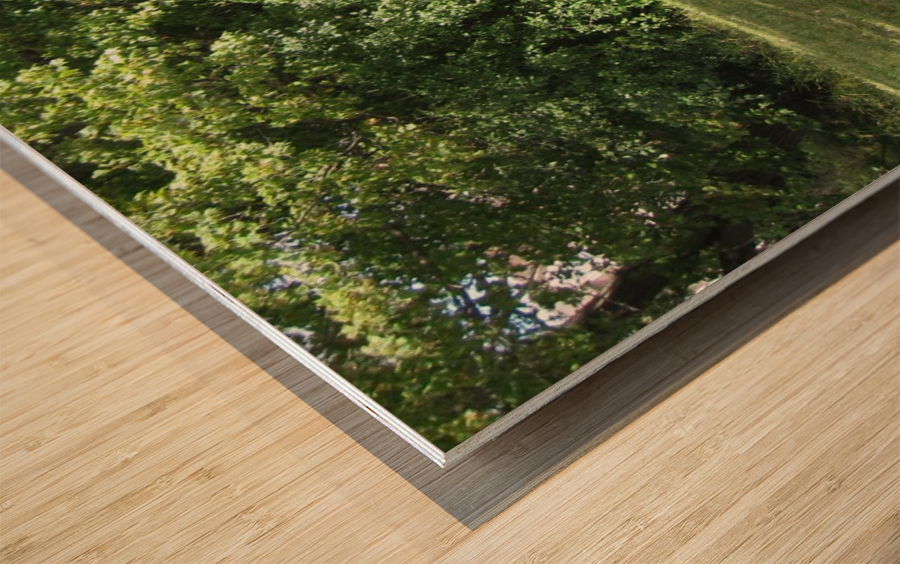 Bench (10) Wood print