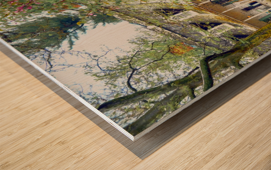 Prospect park Brooklyn Wood print
