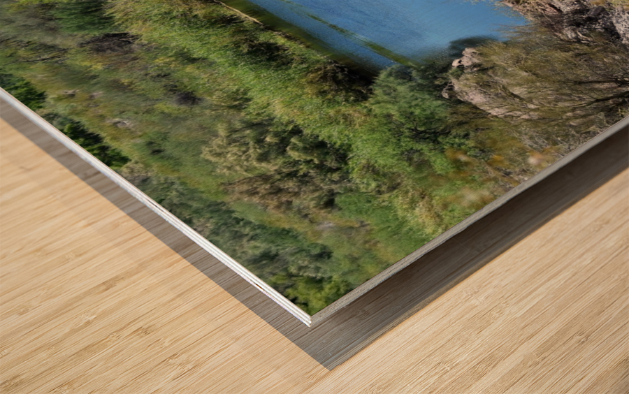 Salt River Wood print