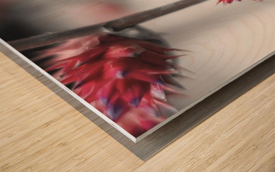 spiked flower Wood print