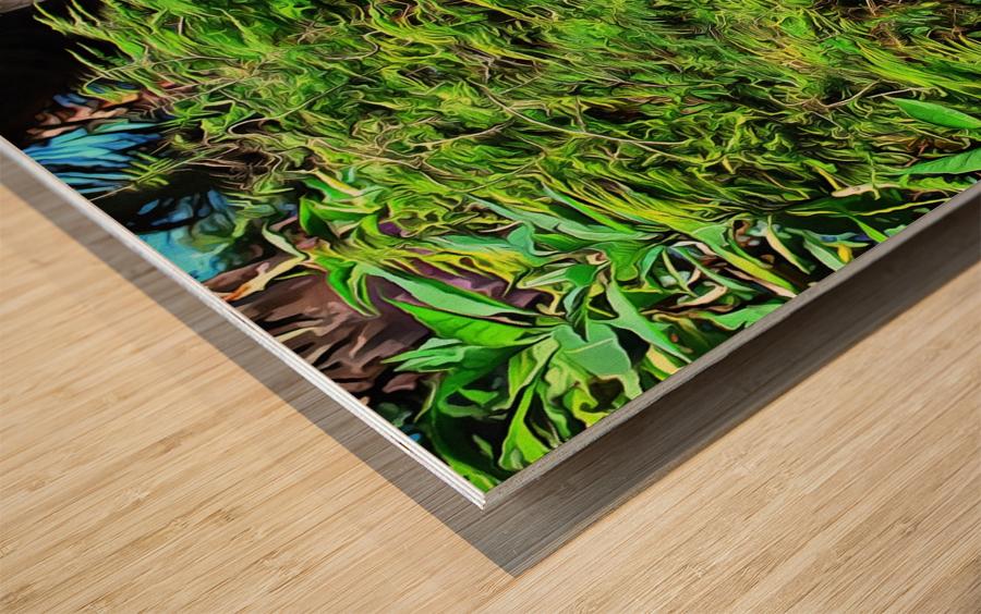 Colorful Plant Pots Marrakech 4 Wood print