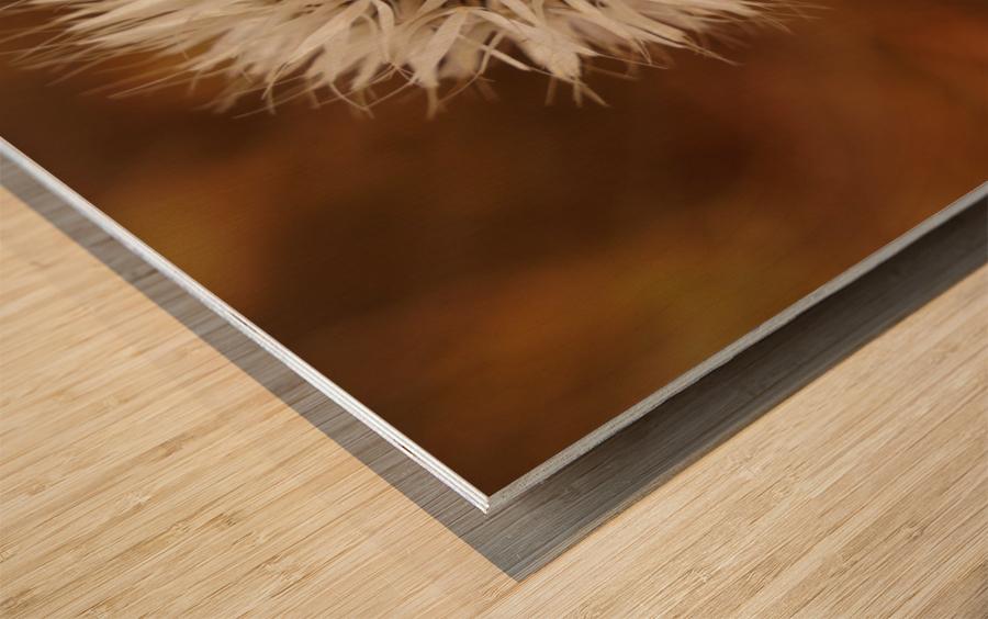 Silver Puff Wood print