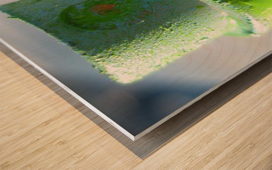 GREEN CAP Wood print