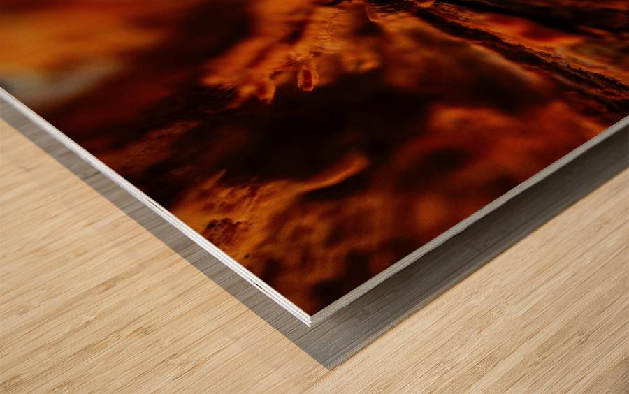 Abstract Macro Nature Photography 110 Wood print