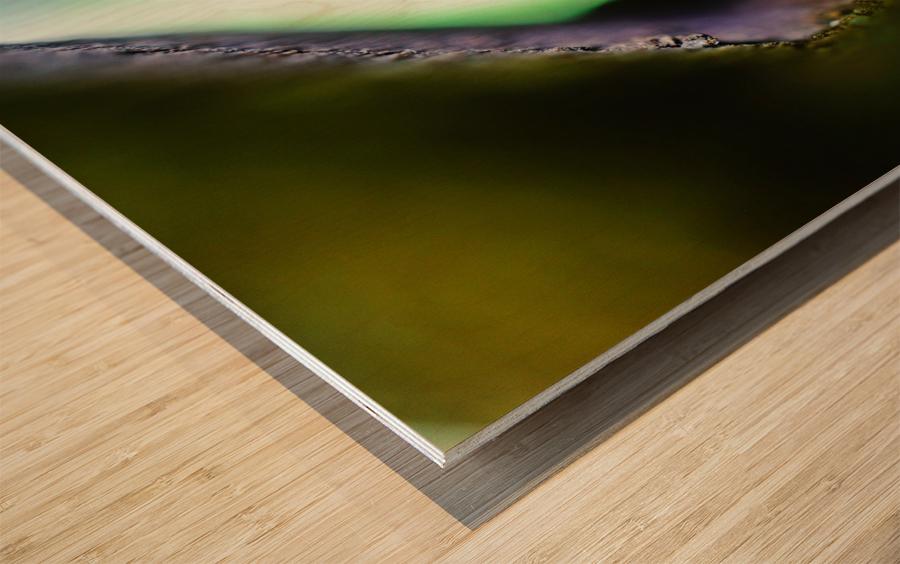 Abstract Macro Nature Photography 09 Wood print