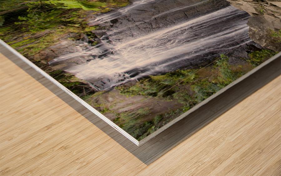 El Junque Waterfall Wood print