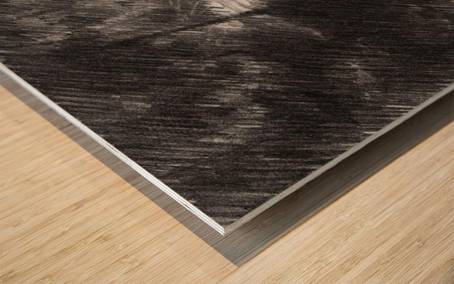 Plasmolen – 16-05-19 Wood print