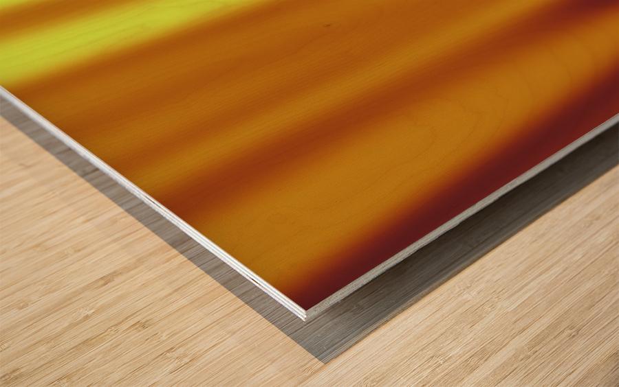 COOL DESIGN (6)_1561505359.8125 Wood print