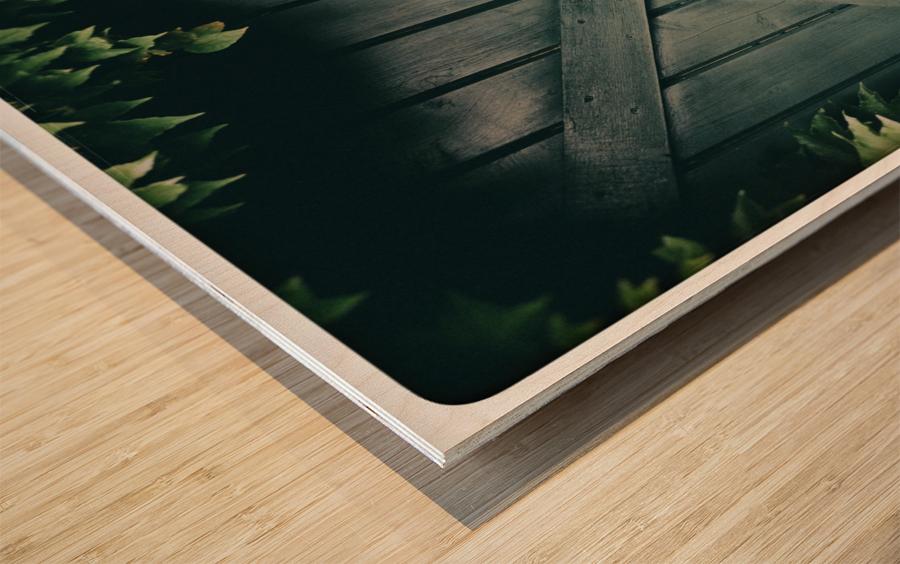 Green Doorway Wood print