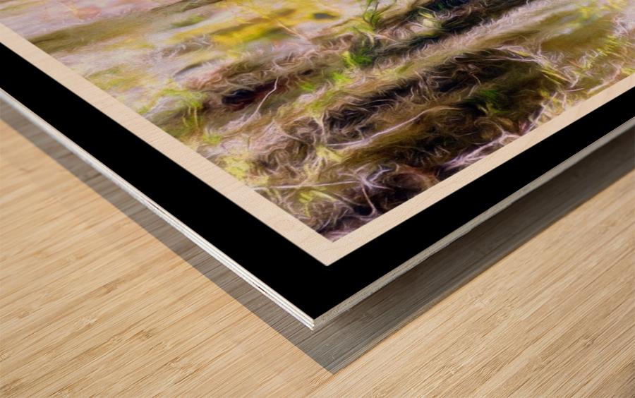 Mystical Swamp - Georgia Okeffe Effect - White and Black  Borders Wood print