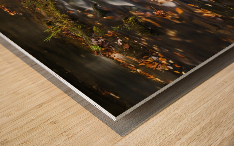 River Flow in Smokey Mountains Wood print