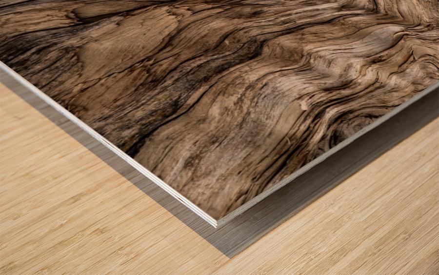 Banff Petrified Wood Wood print