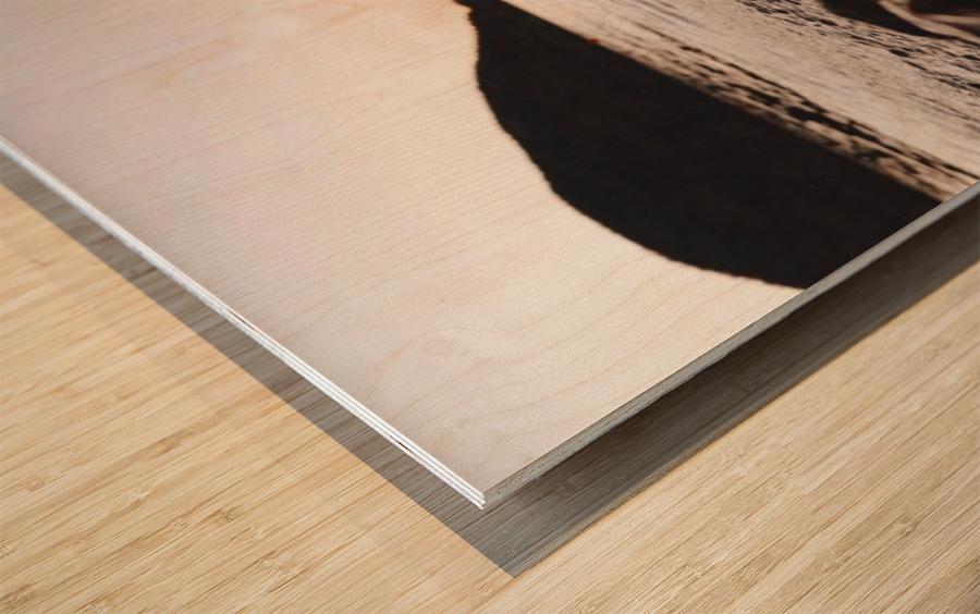 20190728_145100 Wood print