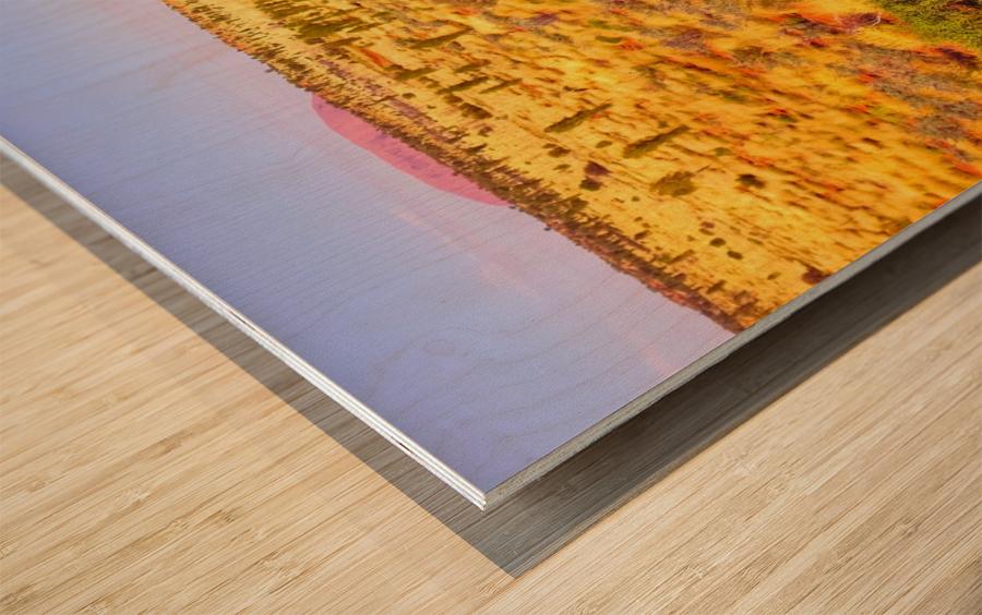 Dune Landscape - Central Australia Wood print