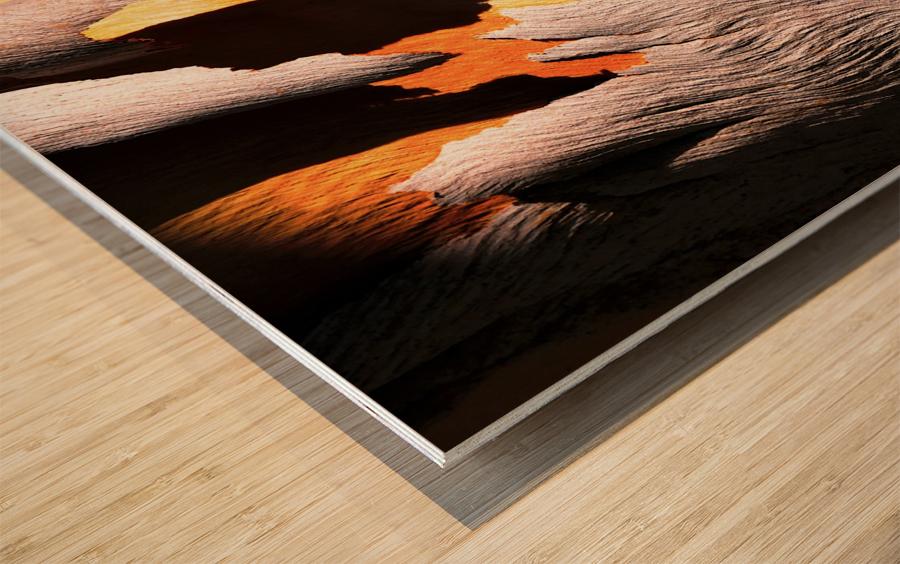 Salmon Bark Peeling Wood print