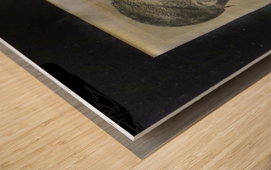 Electronik 1 Wood print
