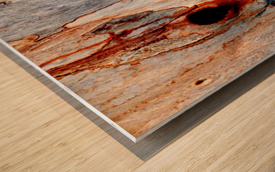 Murray Gum Tree Bark 5 Wood print