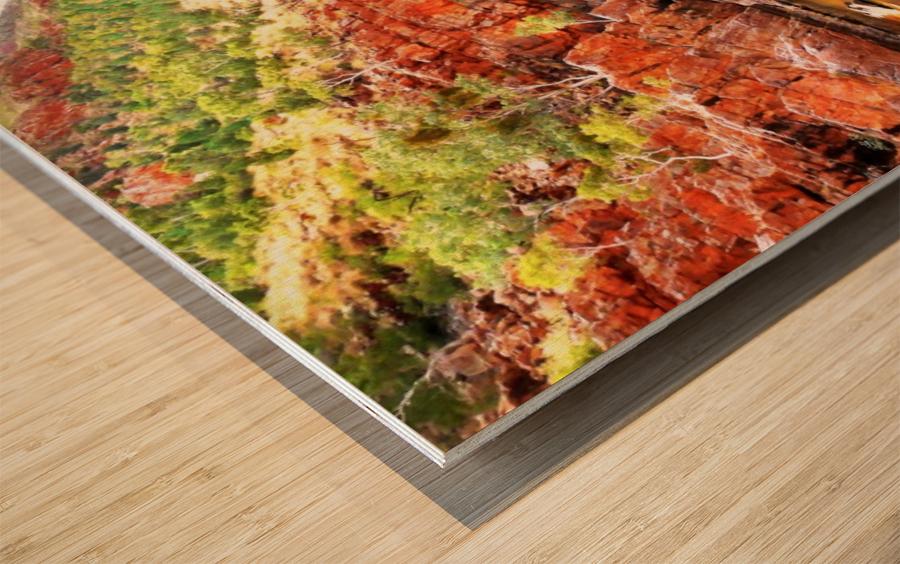 Waterhole - Ormiston Gorge Wood print