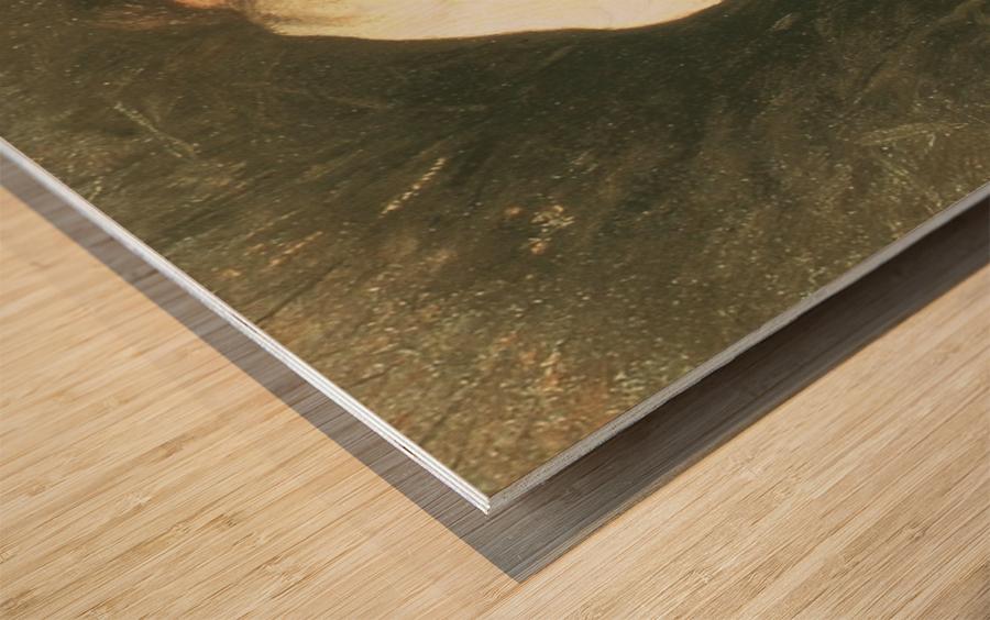 Nymphe dans les roseaux Wood print