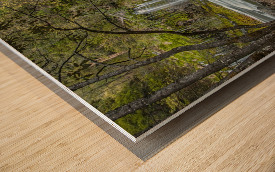 Secret Location Wood print