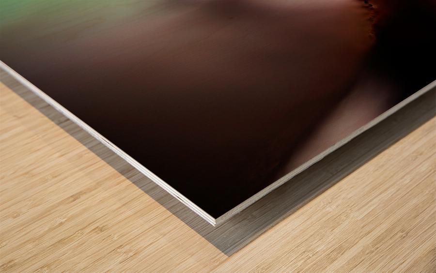 Abstract Macro Nature Photography 146 Wood print