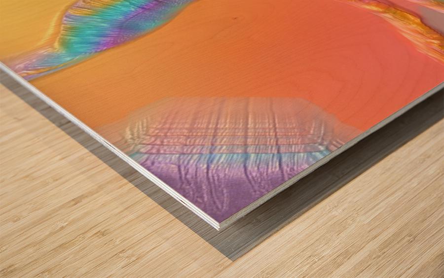 801 Wood print