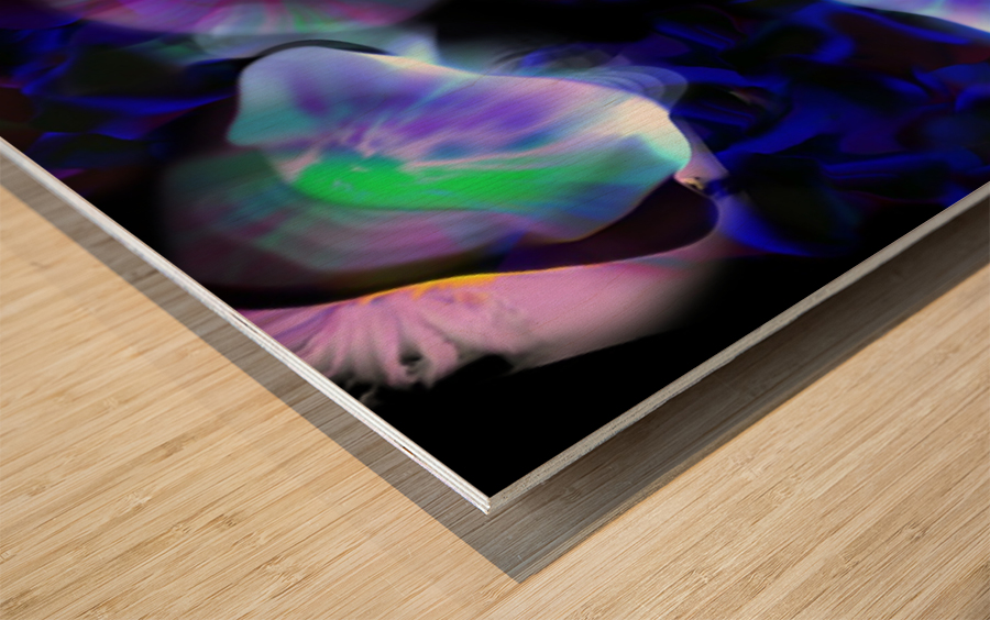 Ref: 848 Wood print